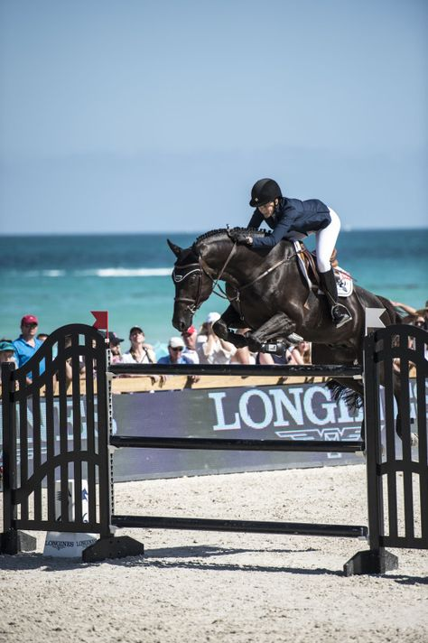 Prep is as prep does equitation saut Prep Prep i Cute Horses, Pretty Horses, Horse Love, Horse Girl, Beautiful Horses, Show Jumping Horses, Show Horses, Miami Beach, Grand Prix