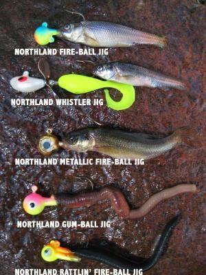 Hooking Live Bait Fishing | Fishing tips | Fishing gear