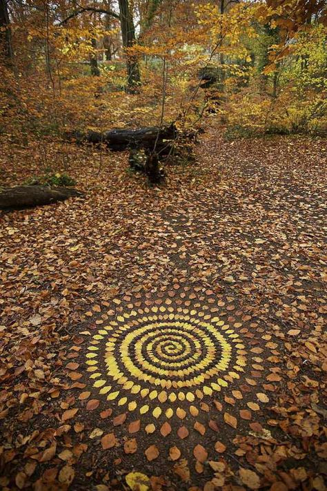 37 Trendy Ideas For Nature Mandalas Art Andy Goldsworthy Land Art, Art Et Nature, Nature Crafts, Nature Artists, Mandala Nature, Mandala Art, Art Environnemental, Arte Do Harry Potter, Ephemeral Art