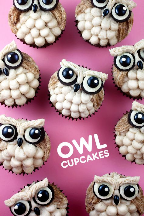 Decorate with buttercream, cookies and candy to make these cinnamon sugar cupcakes owl-out adorable. Sugar Cupcakes, Owl Cupcakes, Cupcake Cookies, Decorated Cupcakes, Easy Animal Cupcakes, Owl Cupcake Cake, Birthday Cupcakes, Owl Cake Pops, Cinnamon Cupcakes