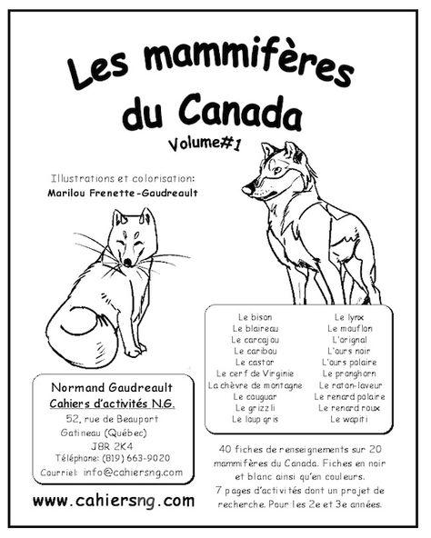 PDF – Les mammifères du Canada (Volume#1) Voici des fiches d'information sur 20 mammifères du Canada. Les fiches de renseignements sont en noir et blanc ainsi qu'en couleurs. Les mammifères sontle bison,le blaireau,le carcajou,le caribou,le castor, le cerf de Virginie, la chèvre de montagne, le couguar, le grizzli, le loup gris, le lynx, le mouflon, …
