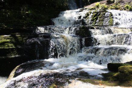 Wasserfall - Southland - Neuseeland im November