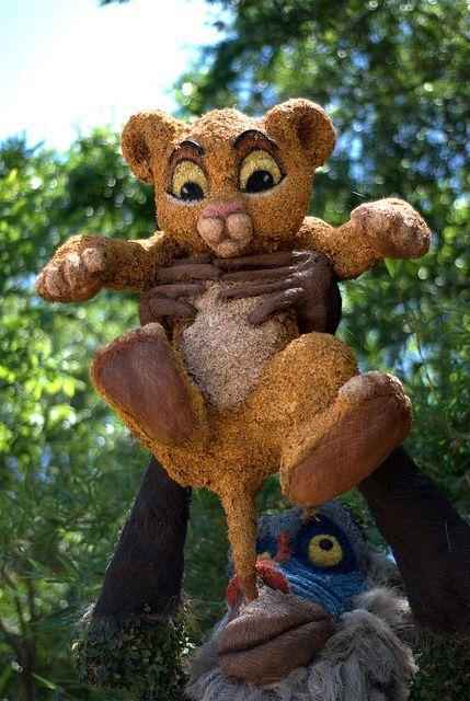 Marvelous Simba At Epcot International Flower U0026 Garden Festival