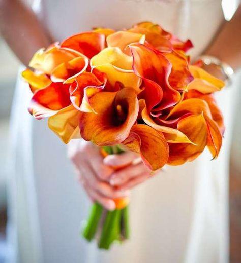 Bouquet Sposa Arancio.Risultati Immagini Per Calle Arancioni Bouquet Arancione Immagini