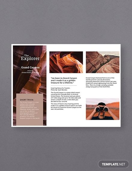 Free A5 Brochure Template In 2020 Brochure Brochure Template