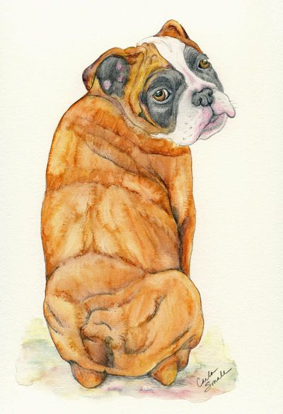 Pin By Hound Co On Art Hound Custom Pet Portraits Dog Portraits