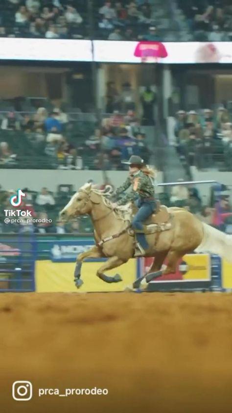 Barrel Racing Saddles, Barrel Racing Horses, Barrel Horse, Hot Country Boys, Country Girl Life, Funny Animal Videos, Cute Funny Animals, Horse Barns, Horse Tack