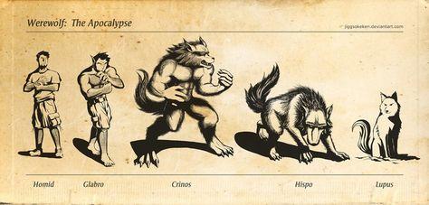 Hogar del Clan de la Luna Roja 4eceaccd9ab2c90f0d273ad654d75fc0--white-wolves-werewolf