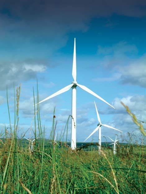 Obama to Expedite Approval Process for Great Lakes Wind Farms - windfarm project manager sample resume