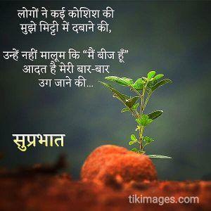 Good Morning New Shayari In Hindi Quotesadda Com Telugu Quotes Tamil Quotes Hindi Quotes Good Morning Quotes Good Morning Photos Morning Quotes