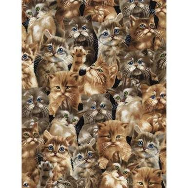 Cats kittens and quilts cute Timeless Treasures fabric