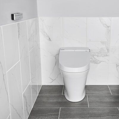 American Standard Advanced Clean 100 Spalet Elongated Toilet Seat Bidet One Piece Toilets Elongated Toilet Seat Bidet Toilet Seat