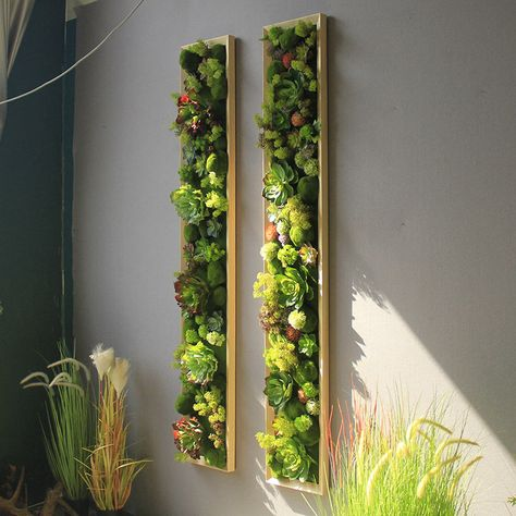Plant Wall Decor, Green Wall Decor, Hanging Plant Wall, House Plants Decor, Patio Wall Decor, Flower Wall Decor, Moss Wall Art, Moss Art, Succulent Wall