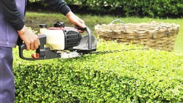 Types Of Lawn Maintenance Landscaping Supplies Garden Maintenance