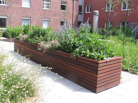Modernes Hochbeet Mit Arzneipflanzen Aus Der Frauenheilkunde Garten Hochbeet Gartendesign Ideen Gartengestaltung