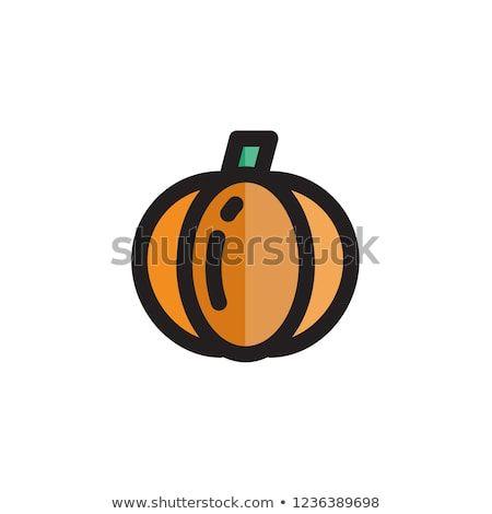 Pumpkin Icon Thanksgiving Symbol