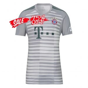 competitive price 655c9 0cb06 2018-19 Cheap Goalie Jersey Bayern Munich Replica Grey Shirt ...