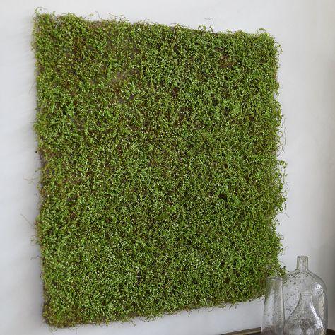 Panels Walls for DIY Crafts Runners Mats 16 oz Spring Green, 1-Pound 1 LB Koyal Wholesale Fake Bulk Moss Decor Filler Terrariums Centerpieces