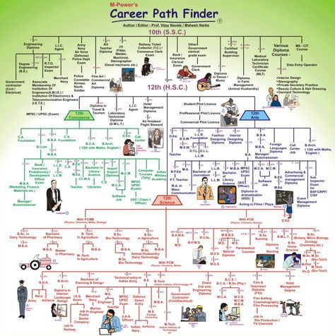 Chart Of Various Career Courses After 10 Std 12 Std Very