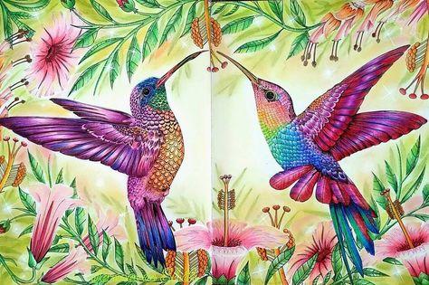 Sooo Happy To Finish This Page Birdtopia By Daisy Fletcher Birdtopia Birdtopiacoloringbook Daisyfletcher Hummingbird Art Hummingbird Painting Bird Art