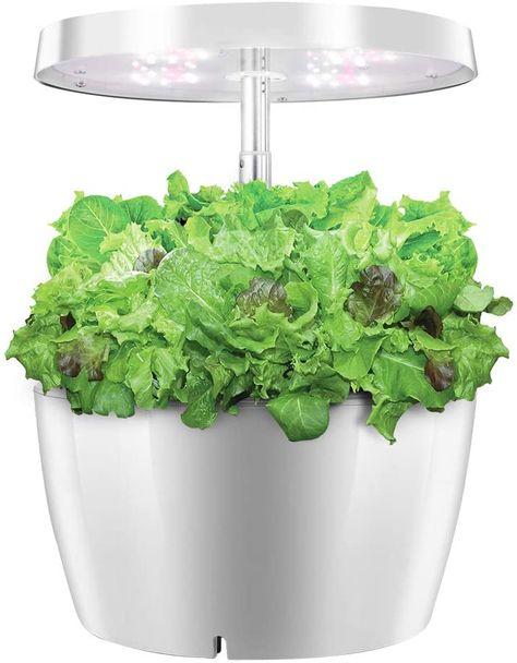 BestPlant™ Indoor Hydroponic Garden System Soilless w/ Grow light