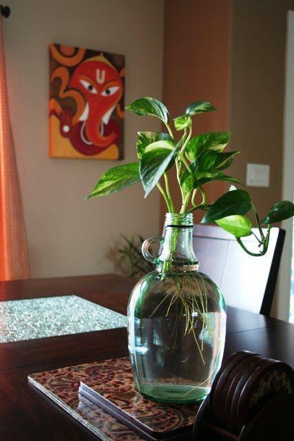 Img 6066 Jpg 427 640 Diy Living Room Decor Plant Decor Decor