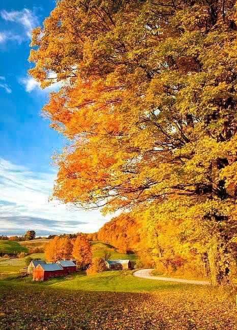 Https Www Facebook Com Myoldecountryhome Photos Pcb 1176147989252944 1176147662586310 Type 3 Theater Fall Pictures Vermont Photo