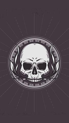 Bone Skull Club Uhd Wallpaper Skull Wallpaper Best Iphone Wallpapers