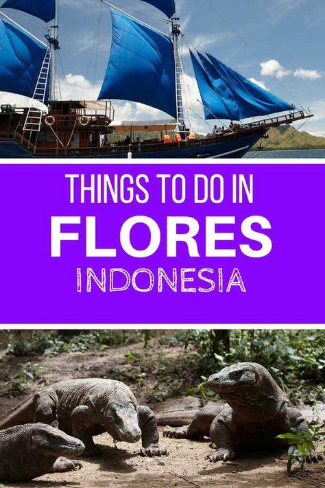 Things to do in Flores #indonesia #flores #thingstodo #komodo #komododragon #travel #asia #bali via @travel2next