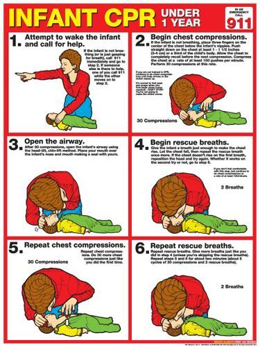 Infant Cpr First Aid Wall Chart Poster 2013 Aha Guidelines Fitnus Corp Infant Cpr Cpr First Aid