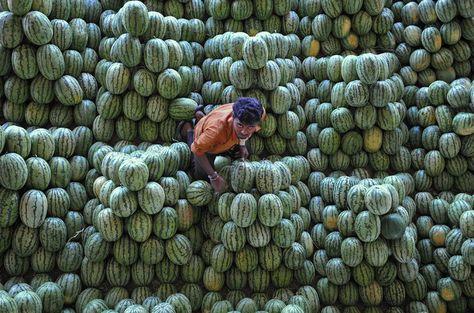 Hyderabad, India    Un venditore al mercato ortifrutticolo di Gaddiannaram (NOAH SEELAM/AFP/Getty Images)