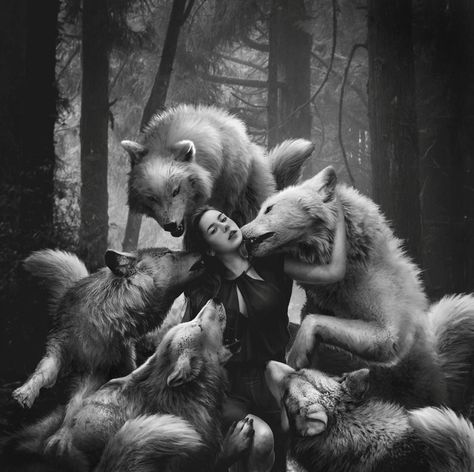 """The Wild still lingered in him and the Wolf in him merely slept."" ~Jack London"