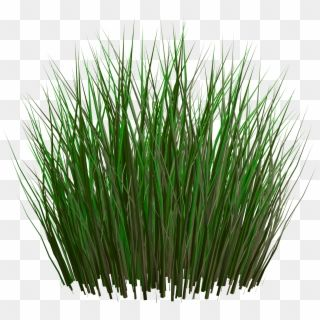 grass png image green grass png picture unity grass texture png transparent png grass textures grass photoshop grass wallpaper grass png image green grass png