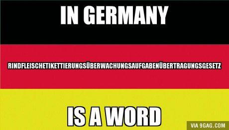 Do you mean: Rindfleischetikettierungsüberwachungsaufgabenübertragungsgesetz? (the longest word in Germany, it was part of a law about meat.)