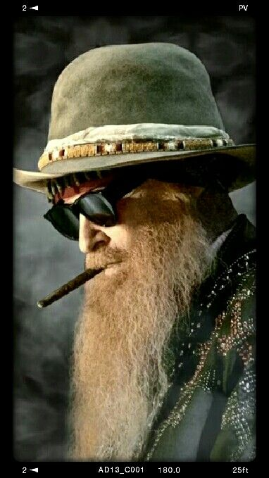 Pin By Warren Timothy On Beards Best Of Heavy Metal Bands Billy Gibbons Rhythm And Blues