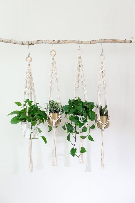 Plant Hanger | Hanging Planter | Air Plant Holder | Plant Stand | Boho Decor | Farmhouse Decor | Succulent Gift | Macrame