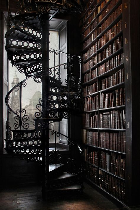I just want a library with a spiral staircase. Now really is that too much t Spiral Staircase Library spiral staircase
