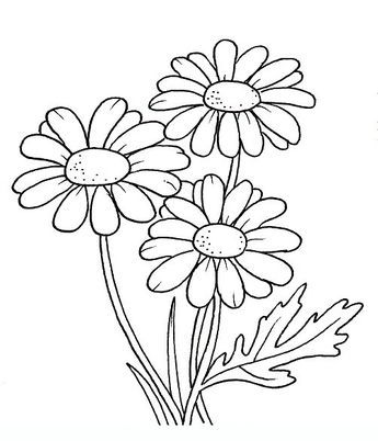 Margherita Disegni Da Colorare Per Adulti E Ragazzi Fiori Disegnati Da Colorare Disegno Fiori Disegni Da Colorare