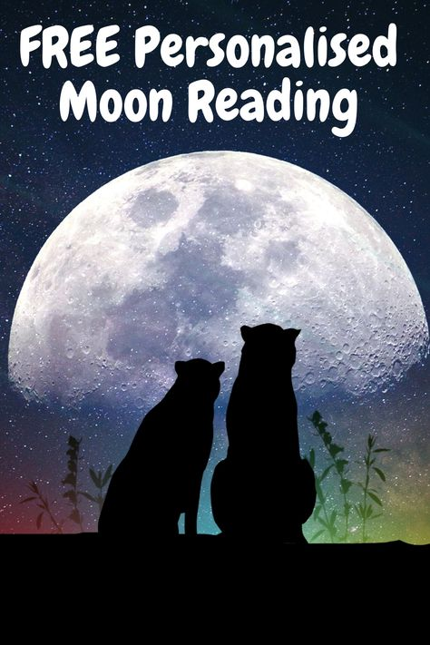 Get A Free Personalized Moon Reading. Find out where you have been misplacing your focus and attention, and how to finally end your struggles.. #freemoonreading #lifepath #personalizedreading #freereading