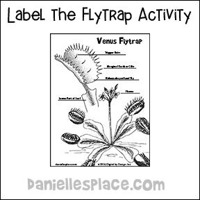 Venus Fly Trap Crafts And Learning Activities For Children Venus Fly Trap Fly Traps Plant Life Cycle