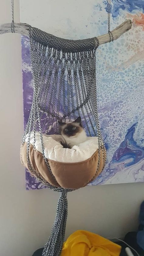 One of a kind handmade macrame cat bed. Black & white rope, coral or natural cot… ) ) One of a kind handmade macrame cat bed. Black & white rope, coral or natural cot…