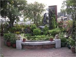 Land Water Bonsai Pot Google Search Pond Landscaping Bonsai Pots Plants