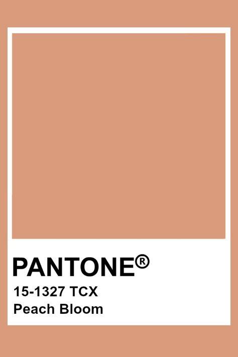 Pantone Peach Bloom