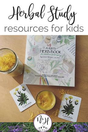 Want to learn herbs with kids? Create a herb study using these kids herb books and resources. Have fun learning with the wilfcraft board game, grow a garden Fun Learning, Learning Activities, Teaching Kids, Outdoor Learning, Teaching Kindergarten, Childhood Education, Kids Education, Outdoor Education, Early Education