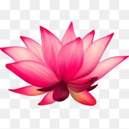 """˲¡í""""° ˧Œí™"""" ̗°ê½ƒ ˧Œí™"""" ̗°ê½ƒ ˲¡í""""° ̗°ê½ƒ ʽƒë¬´ë£Œ ˋ¤ìš´ë¡œë""""œë¥¼ìœ""""í•œ Png Ë° Psd ͌Œì¼ Cartoon Clip Art Lotus Vector Clip Art"""