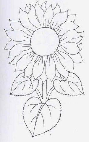 Riscos De Flores 03 Colchas De Girassol Padroes De Bordado