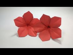 How To Make An Origami Petunia Flower Tutorial Youtube Vesna
