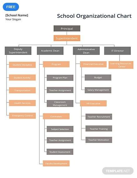 Free School Organizational Chart Chart School Organizational