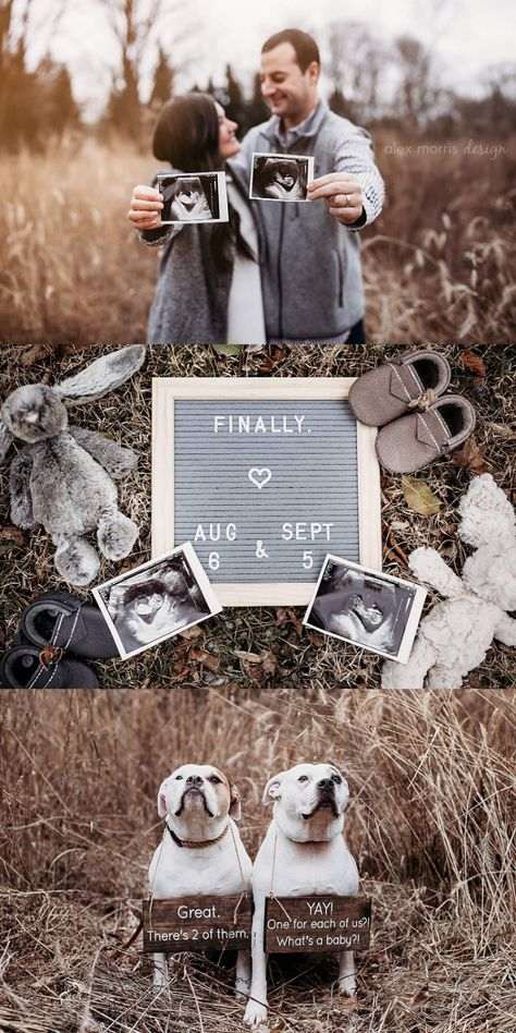 Indianapolis Newborn and Family Photographer Twin Baby Announcements, Pregnancy Announcement Pictures, Pregnancy Announcement Photos, Pregnancy Photos, Baby Announcement With Dogs, Cute Pregnancy Pictures, Rainbow Baby Announcement, Big Sister Announcement, Grandparent Pregnancy Announcement