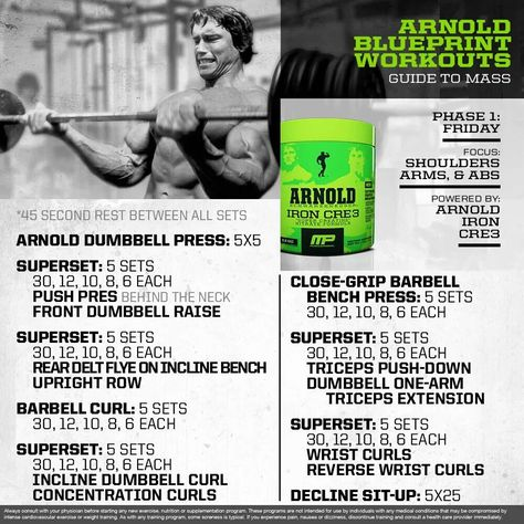 Arnold Blueprint bicep workout GAINS GAINS GAINS Pinterest - new arnold blueprint ebook